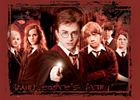 Order of The Phoenix, Trading Card, R7 Dumbledores Army