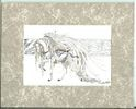 White Angel, Carousel Horse, Print Matted 8