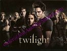 Twilight Cast, Sticker