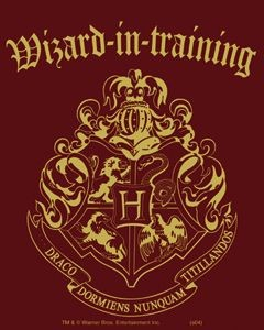 Wizard-In-Training, Sticker