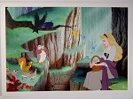 Sleeping Beauty Aurora in Forest, Lithograph Print 10